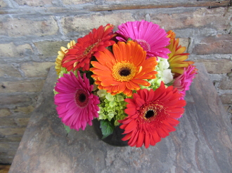 $50.00~Mixed Gerbera Daisies ~ Item 4-a