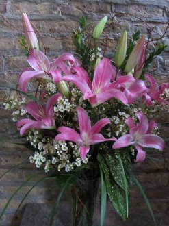 $75.00~Fragrant Pink Oriental Lily